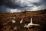 Women walk across a graveyard in Bentiu South Sudan near where a northern aligned militia has settled. Although officially illegal, formal and informal militias abound in Southern Sudan and are responsible for much of the recent violence.