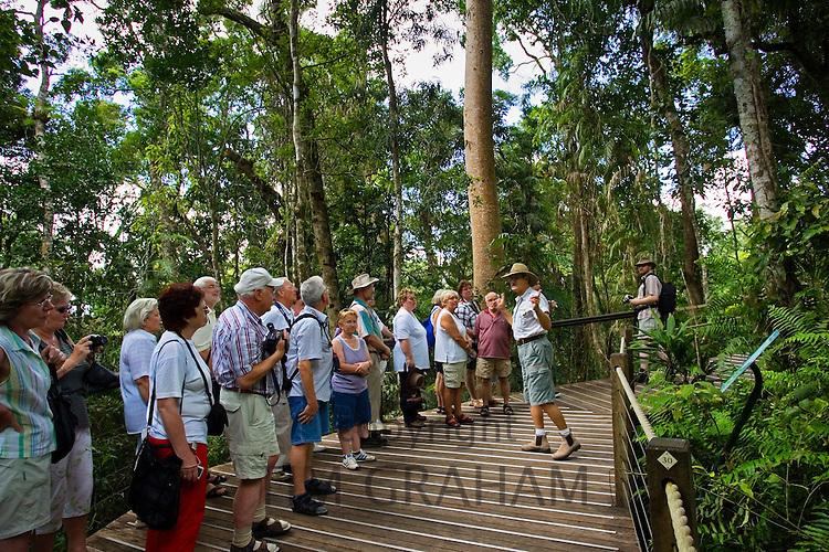Tourists on rainforest boardwalk in Barron Gorge National Park, North Queensland, Australia
