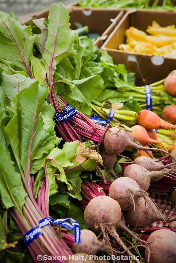 Local grown organic vegetables, beets in bunches at Farmer's Market Arcata California