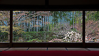 A sea of aged bamboo trunks viewed from a gallery at the Hosen-in Temple, near Kyoto