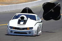 Jul. 27, 2013; Sonoma, CA, USA: NHRA pro stock driver Shane Gray during qualifying for the Sonoma Nationals at Sonoma Raceway. Mandatory Credit: Mark J. Rebilas-