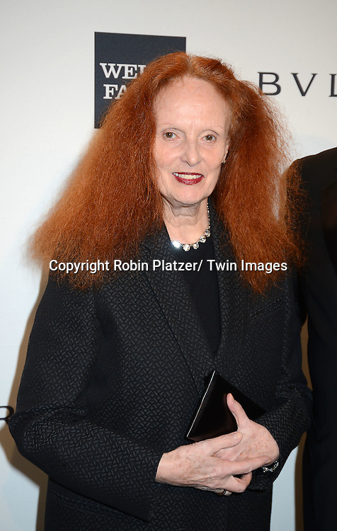 Grace Coddington attends the amfAR New York Gala on February 5, 2014 at Cipriani Wall Street in New York City.