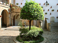 Patio in Cordoba, Spain with typical flower pots on the walls.