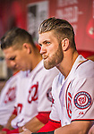 22 May 2015: Washington Nationals outfielder Bryce Harper watches play from the dugout during a game against the Philadelphia Phillies at Nationals Park in Washington, DC. The Nationals defeated the Phillies 2-1 in the first game of their 3-game weekend series. Mandatory Credit: Ed Wolfstein Photo *** RAW (NEF) Image File Available ***