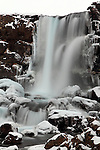 Þingvellir in south-west Iceland is an important historical and geological site where the ancient parliament met, and it marks the point at which the North American and Eurasian plates meet. This is the Oxararfoss waterfall, partly-frozen in mid-March.