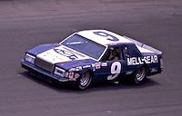 1981 Daytona 500