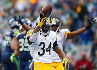 DeAngelo Williams #34 of the Pittsburgh Steelers celebrates his touchdown in the second quarter against the Seattle Seahawks during the game at CenturyLink Field on November 29, 2015 in Seattle, Washington. (Photo by Jared Wickerham/DKPittsburghSports)