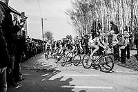 Matthieu Ladagnous (FRA/FDJ) exiting the Holleweg cobble stroke<br /> <br /> 60th E3 Harelbeke (1.UWT)<br /> 1day race: Harelbeke &rsaquo; Harelbeke - BEL (206km)