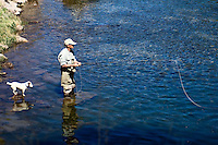 Catch and release trout fishing Green river Utah. Fly fisherman casting a fly with his Jack Russel dog standing on a stone behind him.