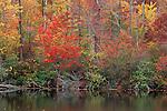 Autumn foliage along Park Lake, Hanging Rock State Park, North Carolina