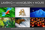 Join three nature photography masters, Frans Lanting, Thomas D. Mangelsen,<br />