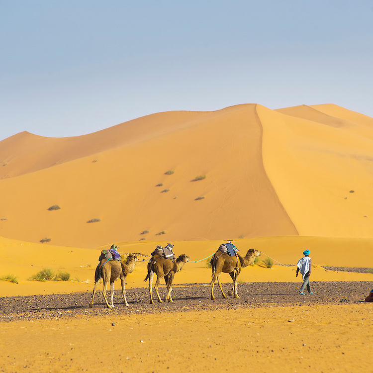 a mans encounter in the sahara desert The life and times of the family moved to the home of antoine's paternal grandfather in le mans and began learning about the sahara desert and its people.