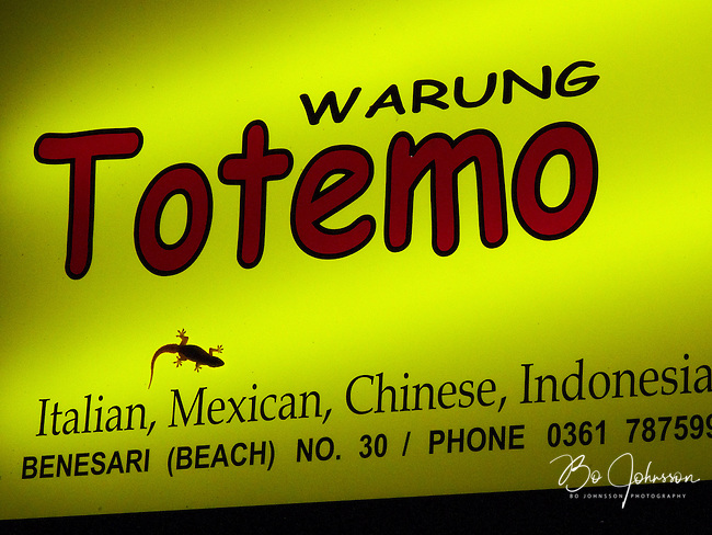 A gecko hunting for food on Warung Totemos illuminated sign.<br /> Jl Benesari in Kuta, Bali, Indonesia.<br /> &quot;Warung&quot; is Indonesian for &quot;restaurant&quot;.<br /> July 2009.<br /> Only for editorial use.