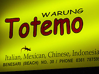 A gecko hunting for food on Warung Totemos illuminated sign.<br />