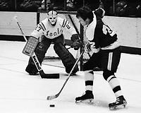 Minnesota North Stars Dennis Hextall shoots on Seal goalie Gilles Meloche. (1975 photo/Ron Riesterer)