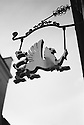 London, UK. 16.01.2016. Griffon hanging sign, near British Museum. Photograph © Jane Hobson.