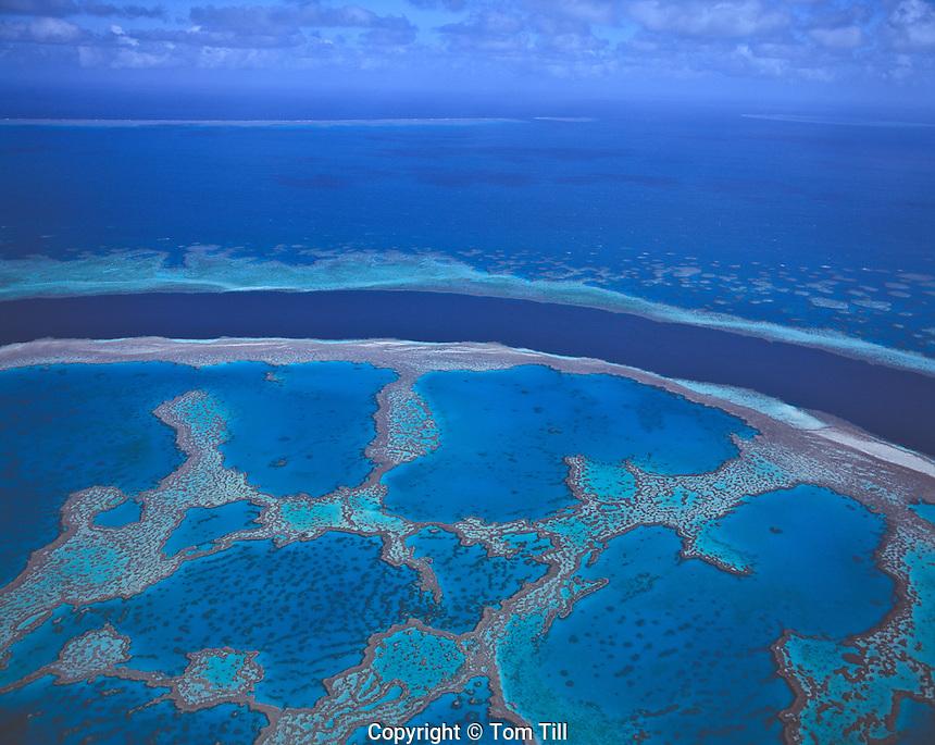Heart Reef, Great Barrier Reef Marine Park, Queensland, Australia   Pacific Ocean Coral Sea    UNESCO World Heritage Site
