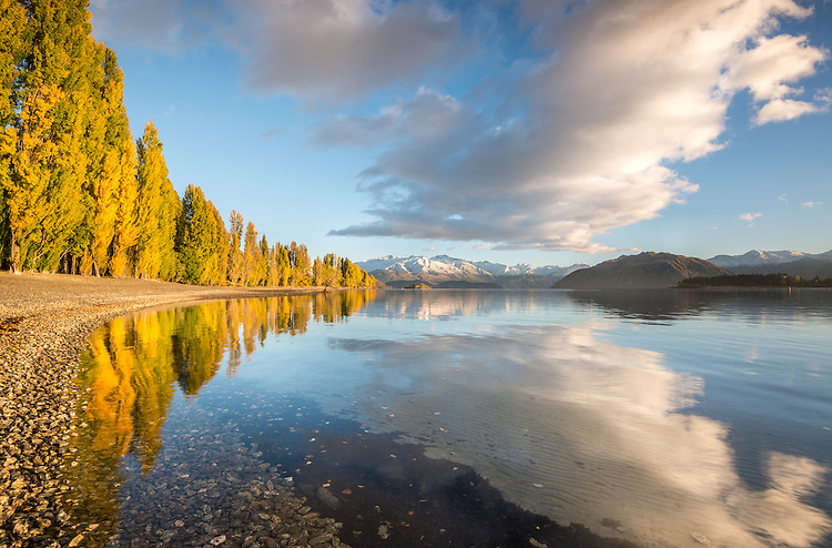 A pristine mirror reflection of autumn trees and snow covered mountains at Lake Wanaka in the South Island of New Zealand
