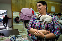 A woman waits for her clothes to dry while in a laundry mat with her pet dog  that patiently rests comfortably on her chest.