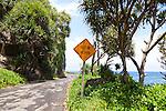 The road beyond Hana to Kaupo