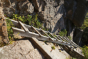 Franconia Notch State Park - Trail ladder along the Hi-Cannon Trail. This trail leads to the summit of Cannon Mountain in the White Mountains, New Hampshire USA