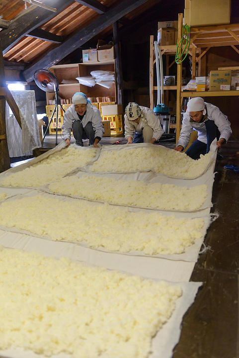 """(From left) brewery worker, Tsuji Makiko and Tsuji Soichiro handling steamed rice that is cooling on the upper level of the brewery. Tsuji Honten Sake, Katsuyama town, Okayama Prefecture, Japan, February 1, 2014. Tsuji Honten was founded in 1804 and has been at the cultural centre of the town of Katsuyama for over two centuries. 34-year-old Tsuji Soichiro is the 7th generation brewery owner. His elder sister, Tsuji Maiko, is the """"toji"""" master brewer."""