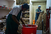 Local workers sort through the herbs in the godown of the Pharmacy of the National Research Institute of Panchakarma in Cheruthuruthy in Thissur district of Kerala, India.