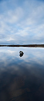 Reflection in small loch, South Uist, Outer Hebrides, Scotland