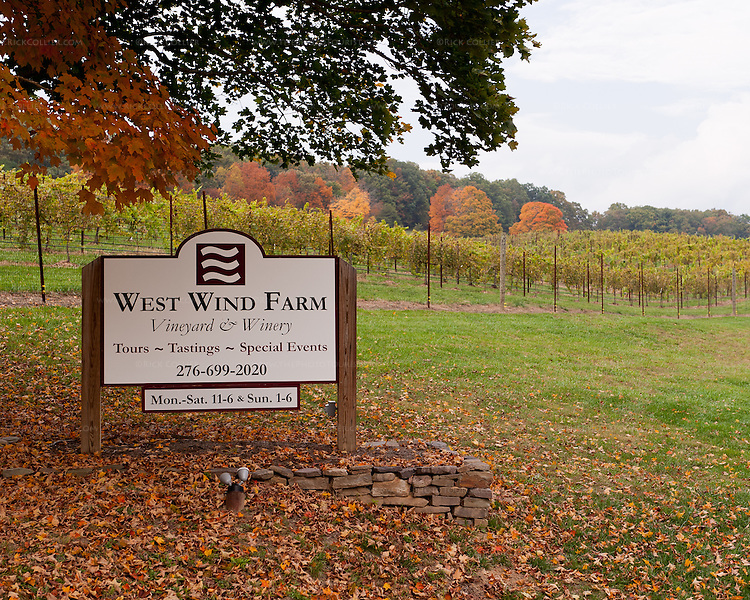 A neat sign under trees by the road marks the entrance to West Wind Farm Vineyard and Winery.