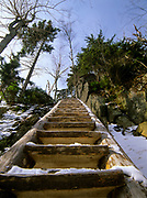 Looking up a trail ladder along Boott Spur Trail in the White Mountains of New Hampshire.