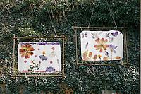 Kinder basteln ein Fensterbild mit Blüten, fertige Fensterbilder mit durchscheinenden Blüten hängen am Fenster