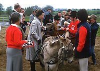 Princess Royal, Princess Anne, at a Riding for the Disabled event in Co Fermanagh during a royal visit to N Ireland, May 1985. 19850503e..Copyright Image from Victor Patterson, 54 Dorchester Park, Belfast, UK, BT9 6RJ..Tel: +44 28 9066 1296.Mob: +44 7802 353836.Voicemail +44 20 8816 7153.Skype: victorpattersonbelfast.Email: victorpatterson@me.com.Email: victorpatterson@ireland.com (back-up)..IMPORTANT: If you wish to use this image or any other of my images please go to www.victorpatterson.com and click on the Terms & Conditions. Then contact me by email or phone with the reference number(s) of the image(s) concerned.