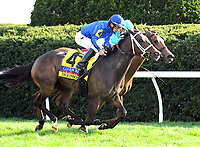 LEXINGTON, KY - APRIL 15: Dickinson wins the 29th running of the Jenny Wiley (Grade I) $200,000 for owner Godolphin, trainer Kiaran McLaughlin and jockey Paco Lopez.  April 15, 2017