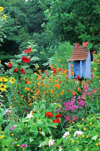 Handmade birdhouse in flower garden, summer