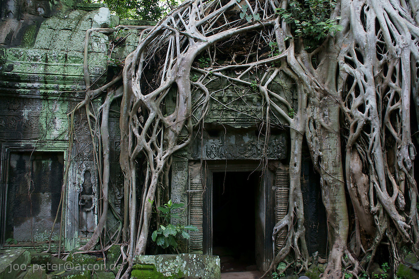 how to get to angkor wat from overseas