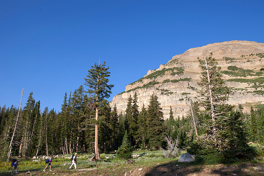 Hikers in the Uinta Wasatch Cache National Forest, UTAH