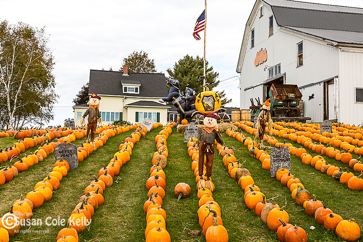 Halloween decorations at Dan Stewart's Family Farm in Presque Isle, Maine, USA