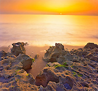 Limestone Outcrops at Dawn, Blowing Rock Preserve, Atlantic Coast on Jupiter Island, Florida