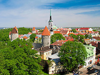 Old Medieval Tallinn City Skyline With Towers from Patkuli Platform, Estonia