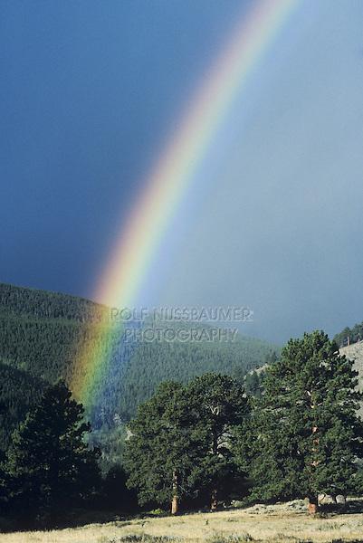 Rainbow over forest, Rocky Mountain National Park, Colorado, USA