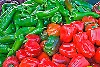 "Bell peppers (""sweet pepper"") Capsicum annuum, Solanaceae, Farm-fresh, Red, Green"