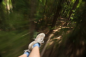 Ziplining through the rainforest from the tourist perspective on the Big island with Kohala zipline