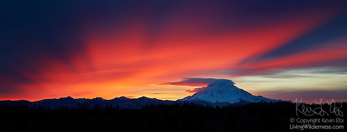 Mount Rainier, Fiery Winter Sunrise, Panorama