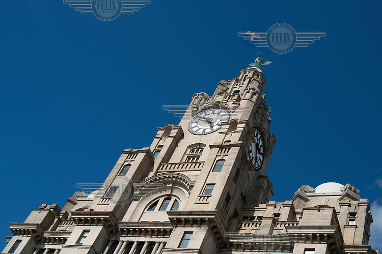 A gull flys past the Liver bird statue at the top of the Royal Liver Building , Pier Head, Liverpool.