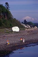 White Rock, BC, British Columbia, Canada - Big Glacial Erratic Granite Rock painted White at Beach at Semiahmoo Bay - Mount Baker, Washington, USA beyond, Summer