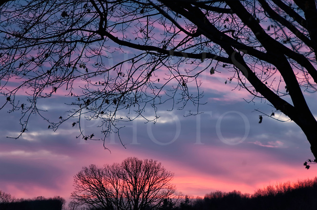 dreamy sky at sunset - photo #40