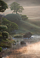 Mist rising from the water at sunrise over the ornamental lake of the Suizen-ji garden