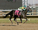 Parx Racing Win Photos 12-2013