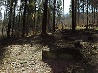 FOREST_LOCATION_90200