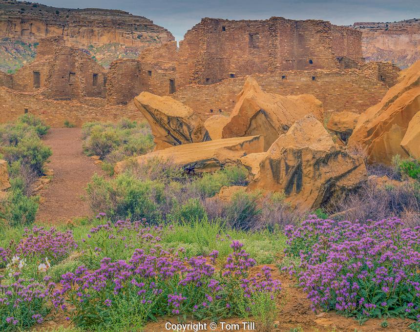 Pueblo  Bonito in spring, Chaco Culture National Historic Park, New Mexico,  Huge Ancestral Puebloan ruin